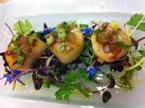 Scallops with tomato and cucumber salsa